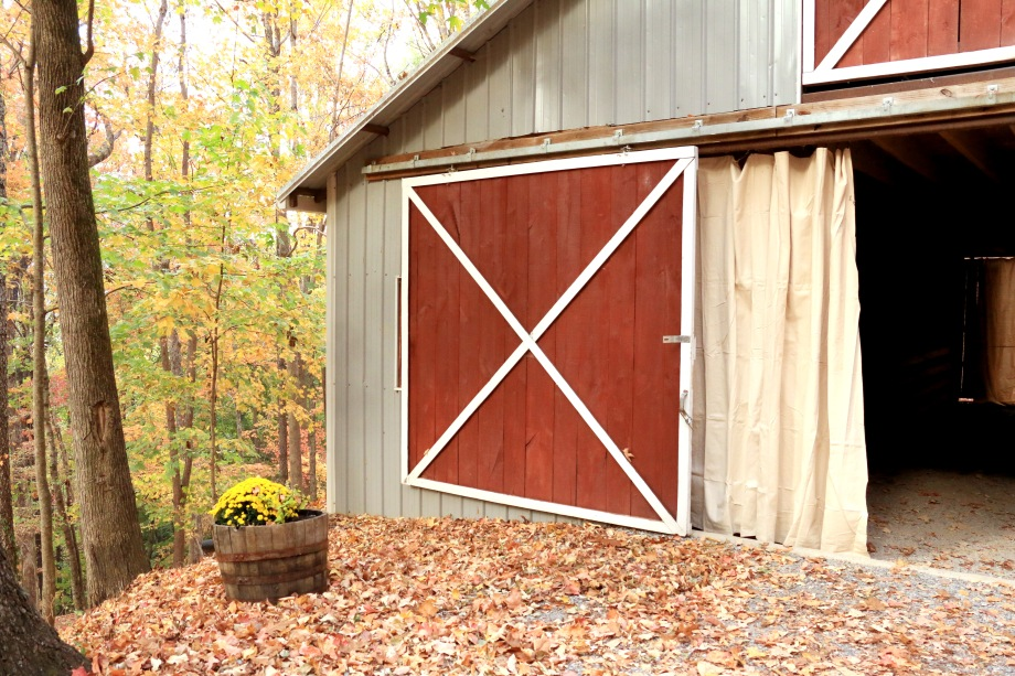 side-of-barn_fall_flowers